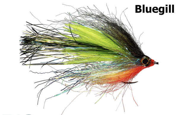 RIO Princess Slaya Bluegill